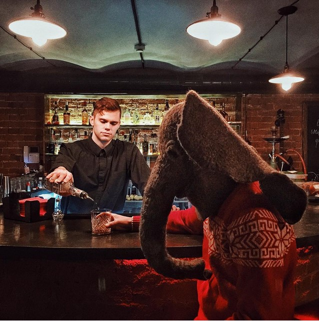 Пьяный хобот: слон фотографируется в самых печальных местах России