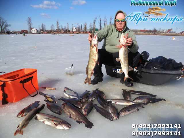 прогноз погоды на рыбалку в подмосковье