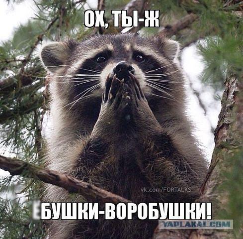 Рада в четверг должна окончательно принять закон о возвращении миллиардов Януковича, - Пашинский - Цензор.НЕТ 6932