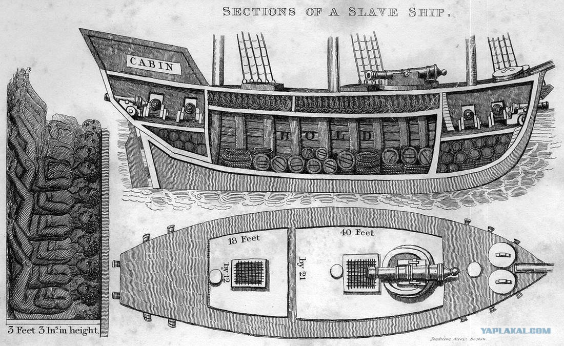 slave ship essay One particular kind of visual description is also the oldest type of writing about art typhoon coming on, also known as the slave ship sample student papers.