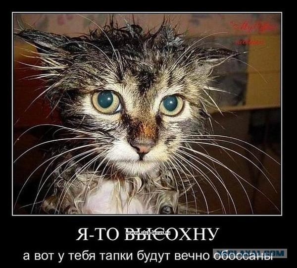Чому пизда стає мокрою 22 фотография