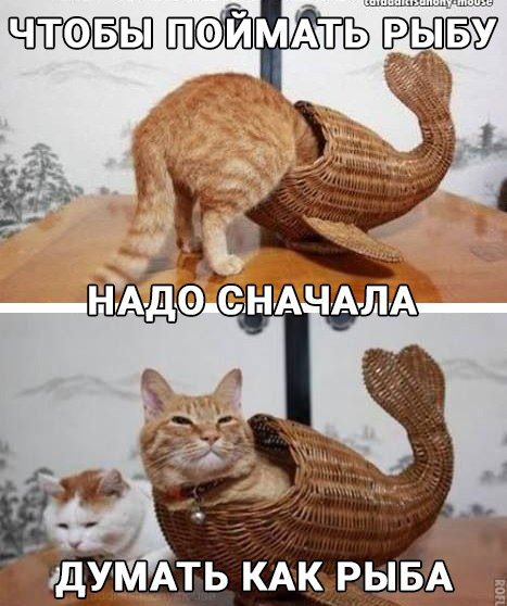 http://s00.yaplakal.com/pics/pics_original/3/6/1/10088163.jpg