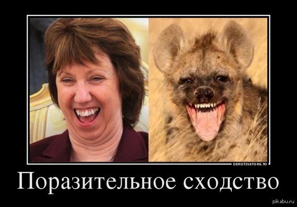 http://s00.yaplakal.com/pics/pics_original/3/6/1/3811163.jpg