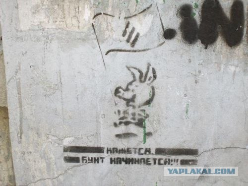 Политическая ситуация в Украине одной картинкой