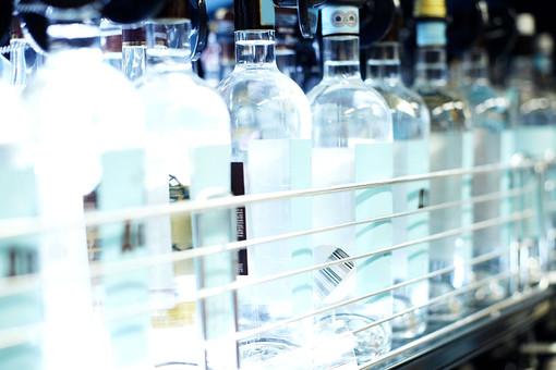 Подражавшие Мамаеву и Кокорину дети напились водки