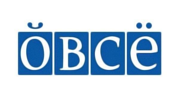 ОБСЕ готова сотрудничать с международными миротворческими силами на Донбассе, - представитель миссии - Цензор.НЕТ 190