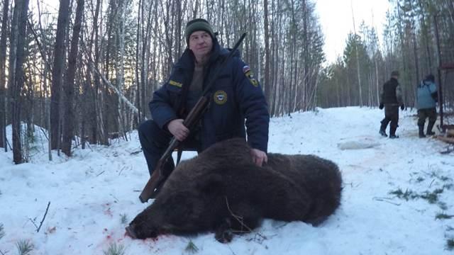 Блогера, снявшего охоту губернатора на медведя, задержали в Иркутске