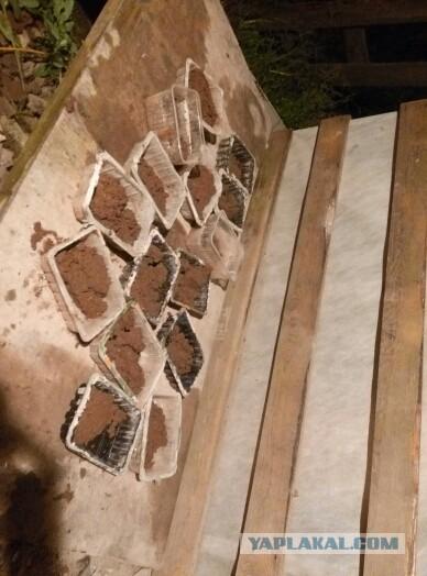 В продолжение темы о бане. Изготовление фасадной плитки своими руками.