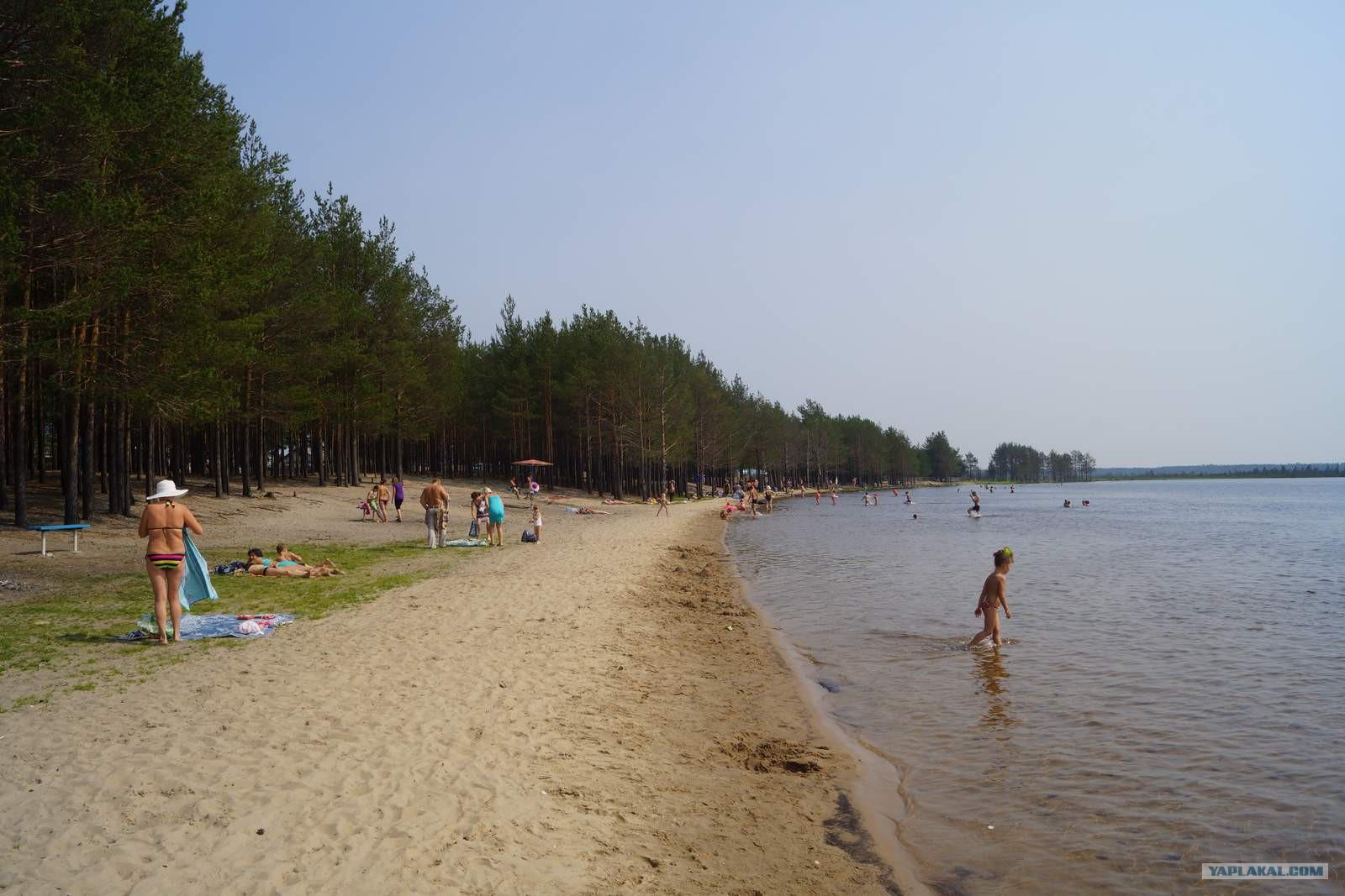 Фото с томского пляжа