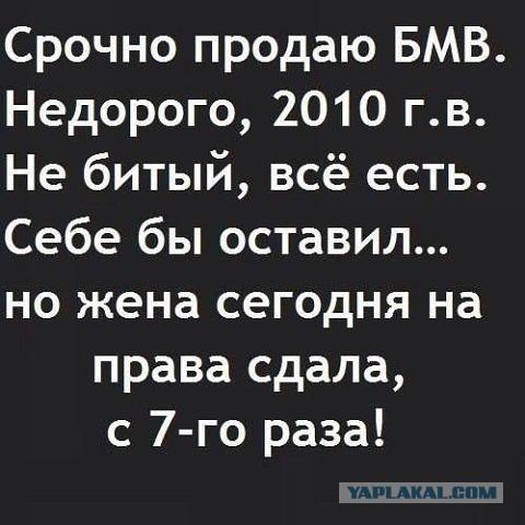 http://s00.yaplakal.com/pics/pics_original/4/0/8/4563804.jpg