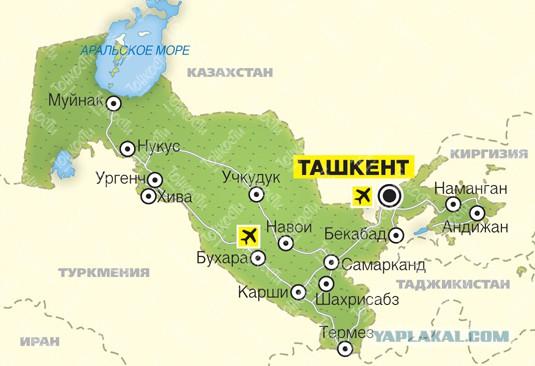 Узбекистан, 20 февраля, +16, нервным не смотреть!