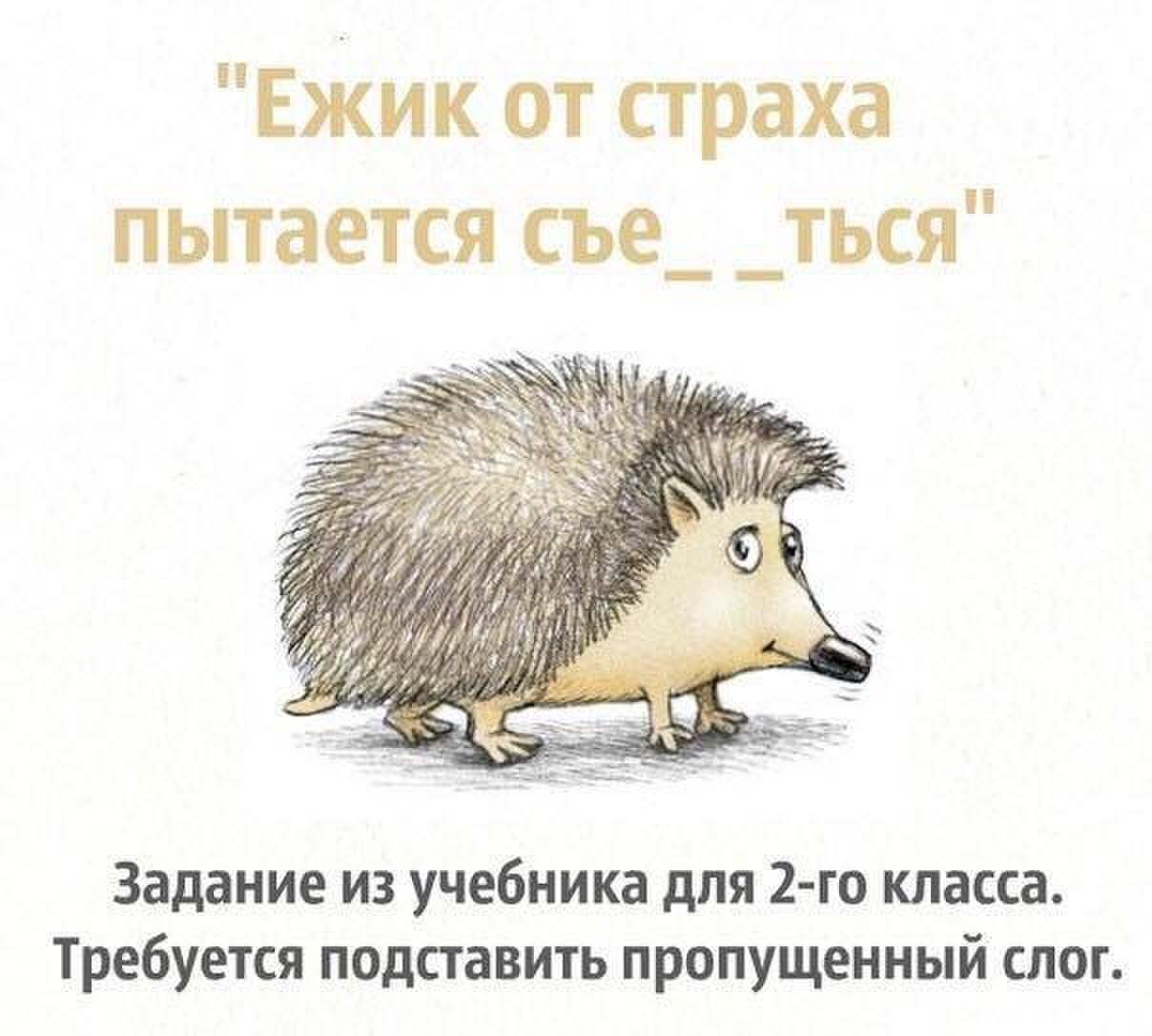 http://s00.yaplakal.com/pics/pics_original/4/1/5/8406514.jpg