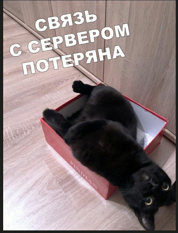 http://s00.yaplakal.com/pics/pics_original/4/1/6/13433614.jpg