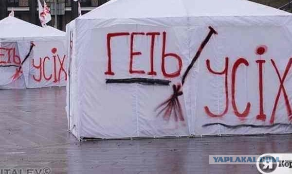 Совет Европы требует немедленно освободить военных инспекторов ОБСЕ, захваченных донецкими террористами - Цензор.НЕТ 5516