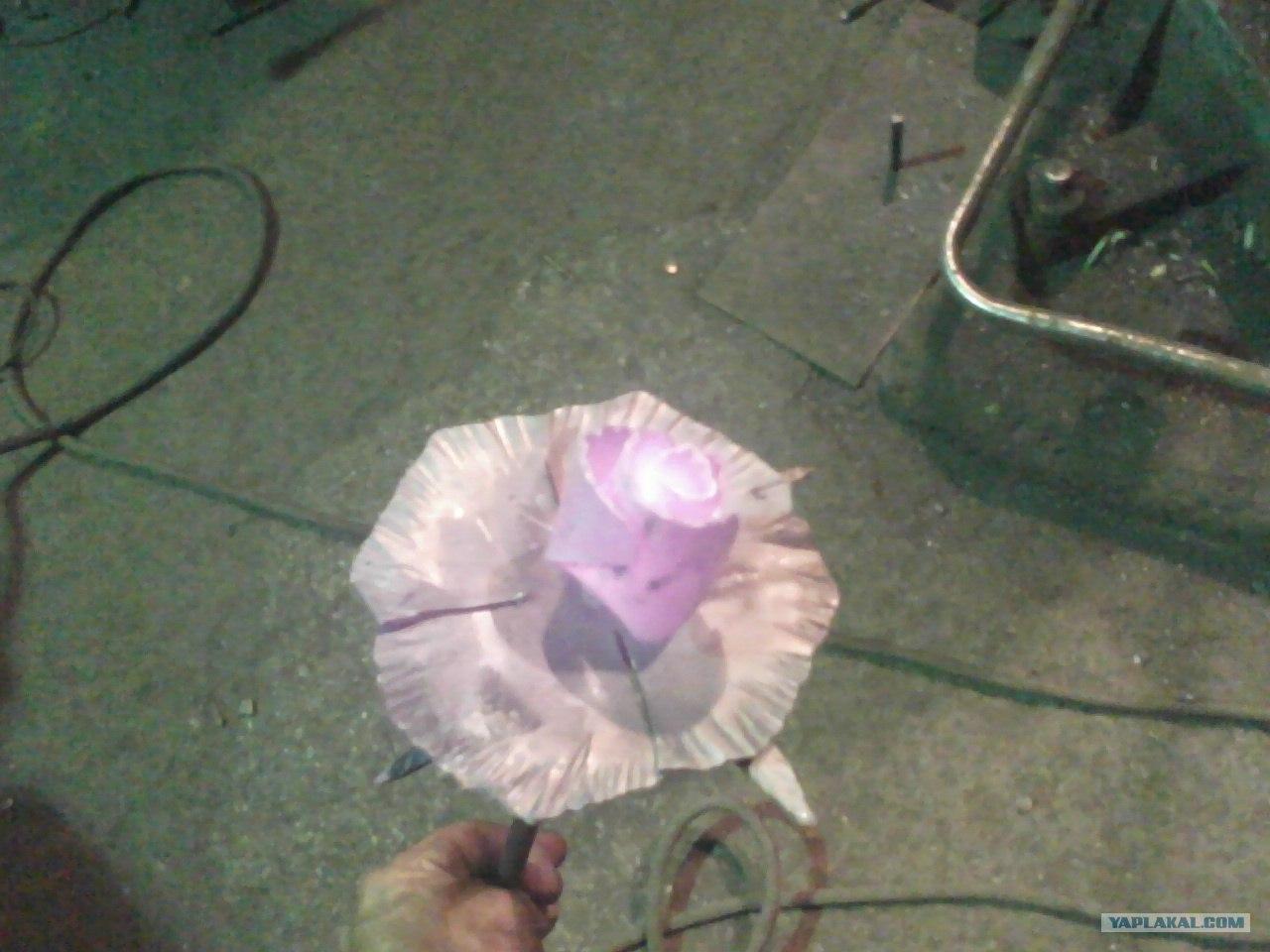 Роза из хуя 4 фотография