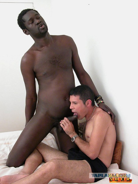 аргентиниец и метис гей секс