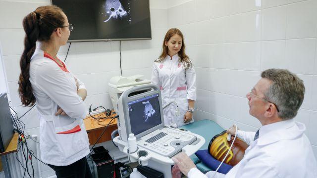 Байки нашего времени: Скворцова рассказала, сколько получают врачи в России
