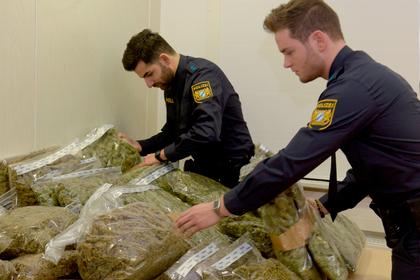Немецкие полицейские нашли пользу в марихуане