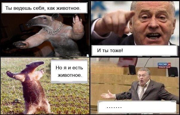 приколы с жириновским: