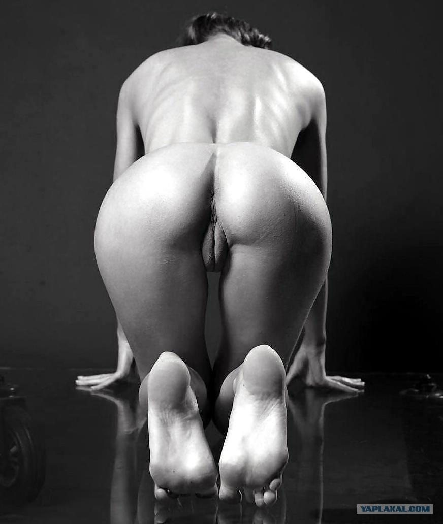Фотографии голой женской жопы 27 фотография