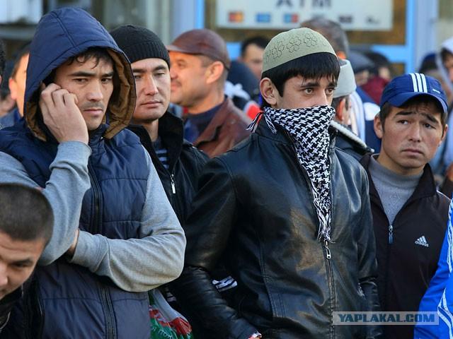 Глава ФМС России предложил мигрантам-нелегалам