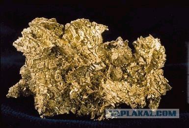 Как добывают золотишко