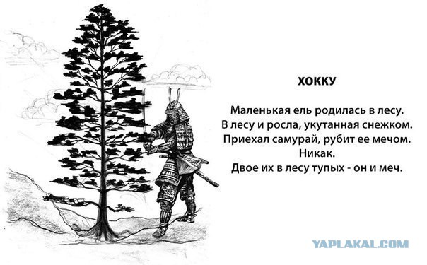 http://s00.yaplakal.com/pics/pics_original/4/5/0/5314054.jpg