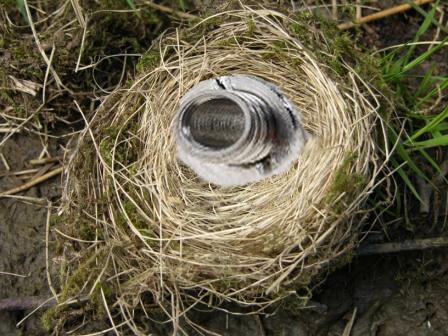 фубля похоже я помешал петушарам петушится ну лан,не буду ворушить ваше гнездо.