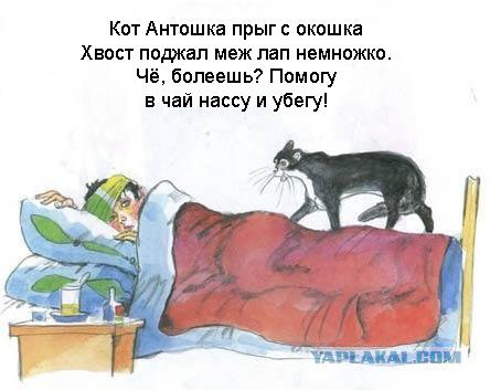 antosha-v-porno