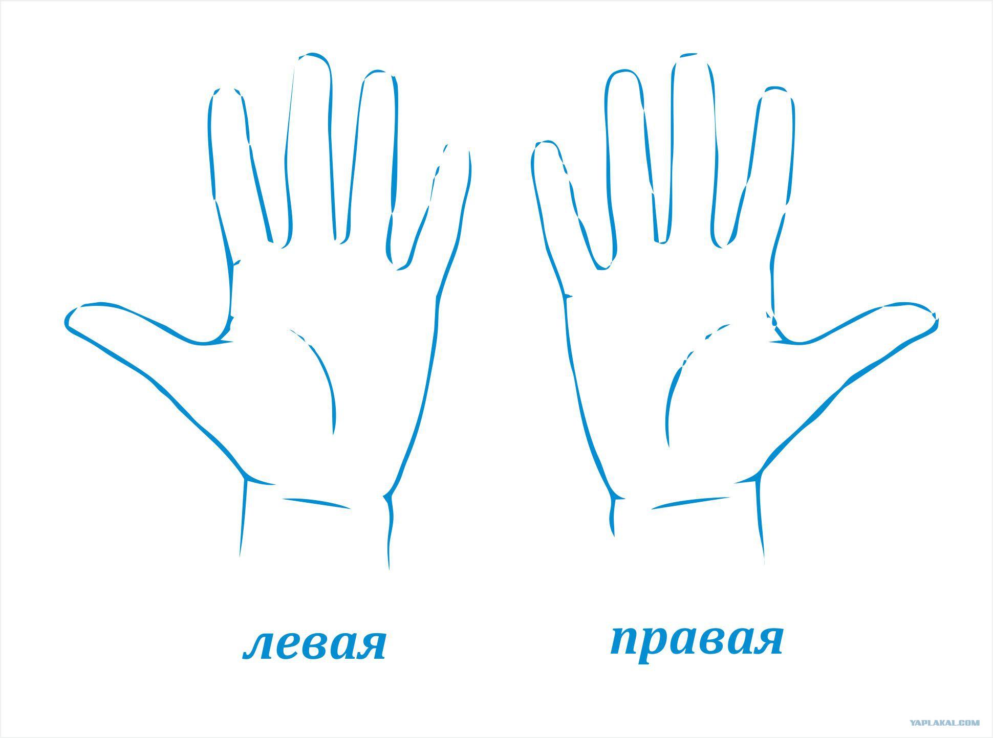 левая рука раскраска