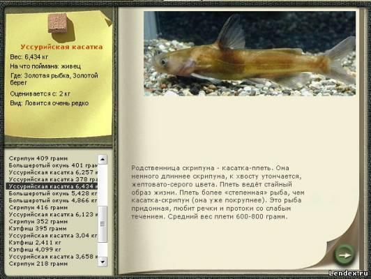 ловля рыбы на уссури