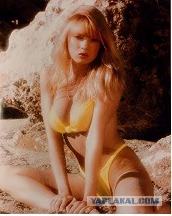 Tracey adams голая живое фото
