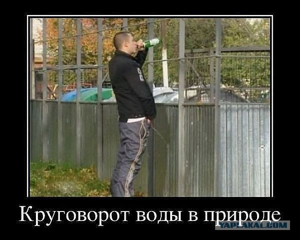 foto-pisayushie-stoya-devushki