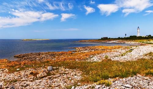 Остров журавлей. Куресаари- Сааремаа. Эстония