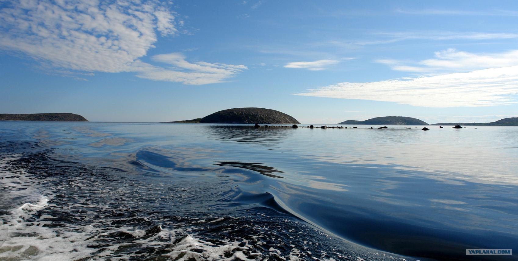 Белое море фото 24 фотография