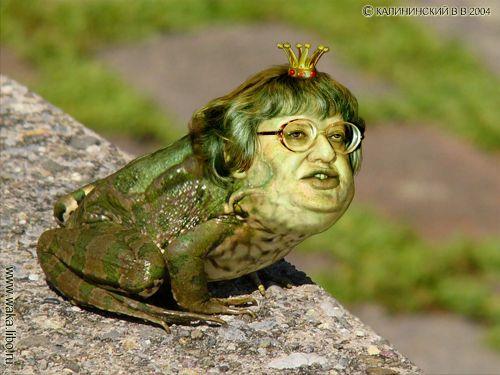 Царевна - лягушка - ЯПлакалъ