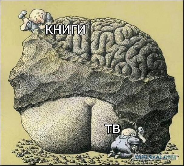 В СПб памятную доску Колчаку завесили плакатом с Волан-де-Мортом