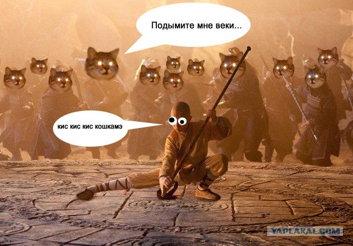 аватар повелитель стихий: