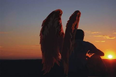 Картинки крылья ангелов