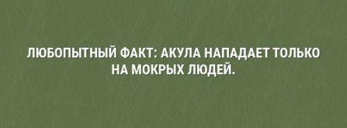 http://s00.yaplakal.com/pics/pics_original/4/9/9/12965994.jpg