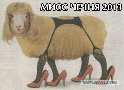 sovmestimost-kozi-s-kozoy-seks