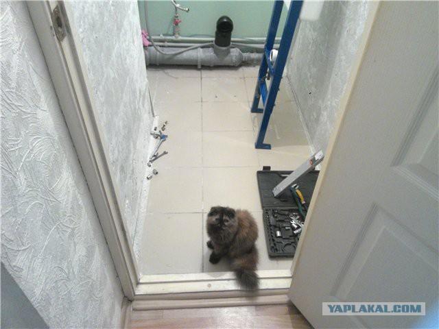 Как я сделал ремонт туалета и ванной