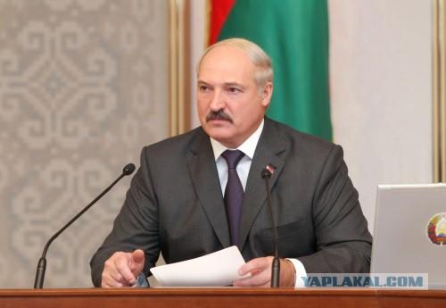 Лукашенко: мы не щенки,чтобы нас за шиворот водить
