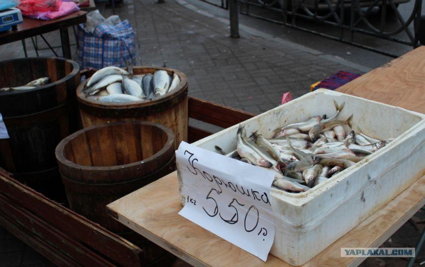 все для рыбака в санкт-петербурге