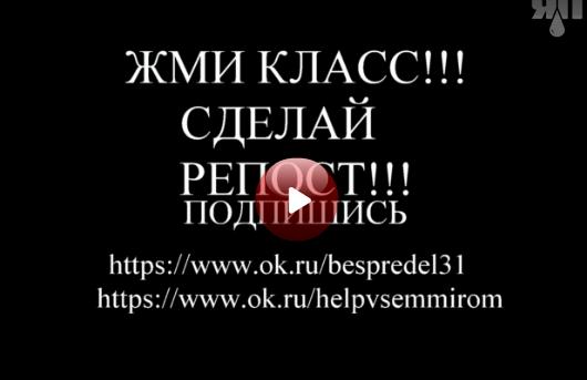 Жестокое избиение мужчины толпой в Белгороде