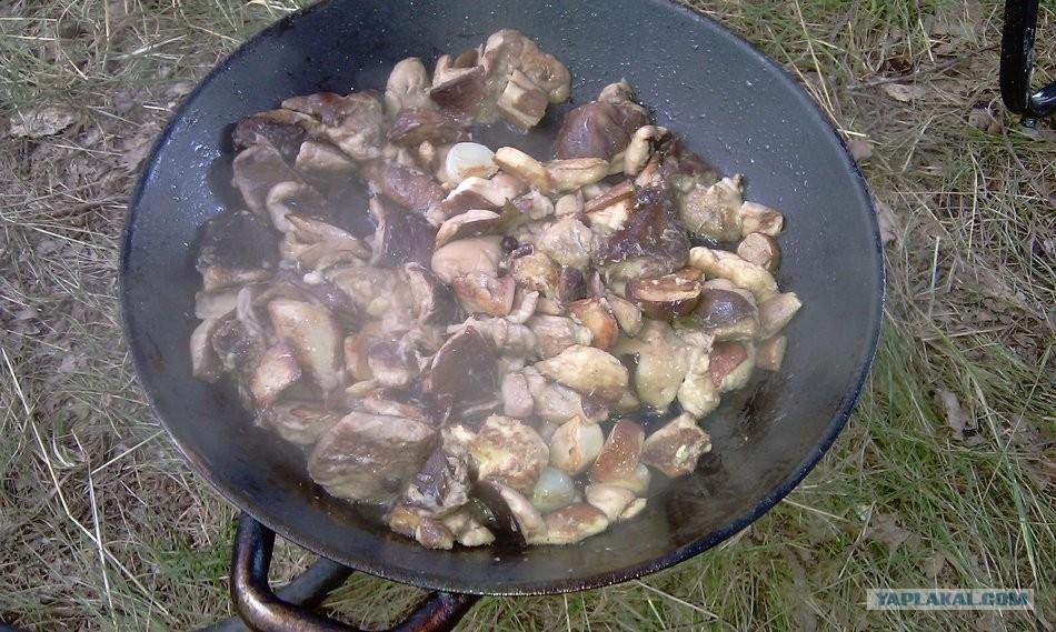 корейский салат из древесных грибов рецепт
