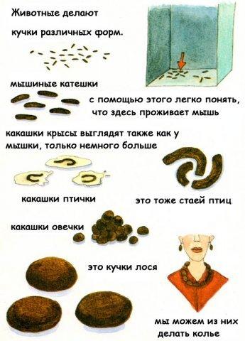 http://www.yaplakal.com/uploads/post-3-12358229836231.jpg