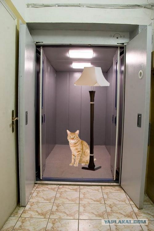 сам адмирал при скольки этажах устанавливается лифт Костанай
