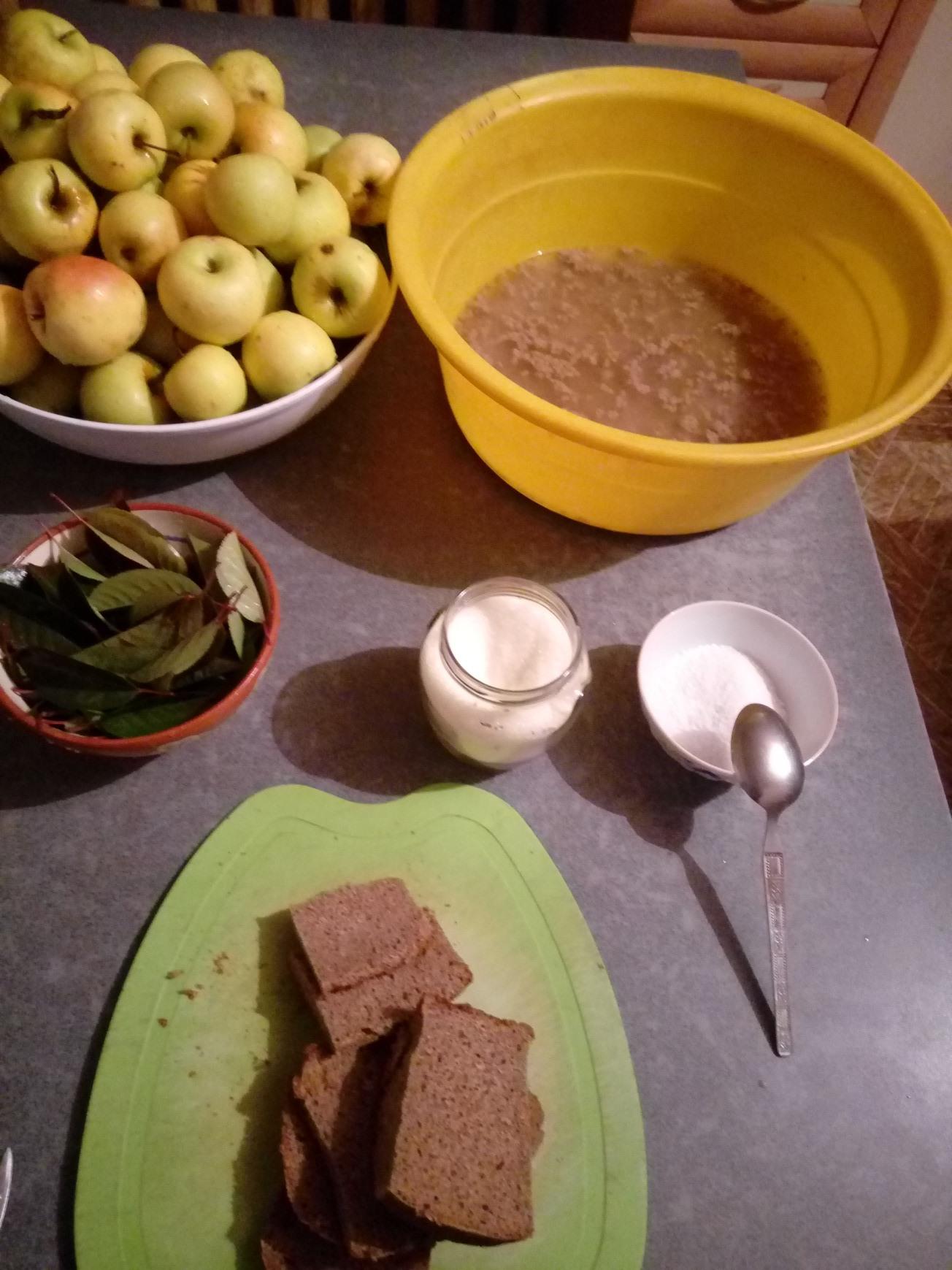 Рецепт моченых яблок антоновка с ржаной мукой