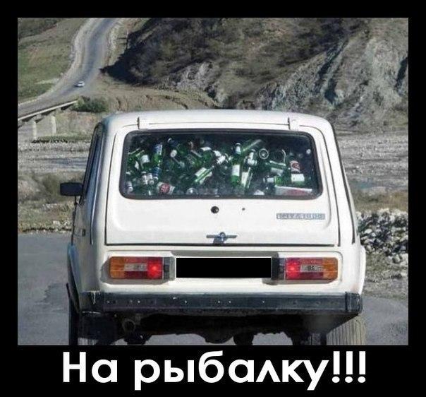 http://s00.yaplakal.com/pics/pics_original/5/3/1/8680135.jpg